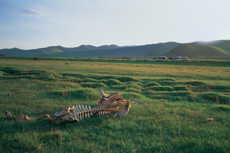 Mongolia_A3_040